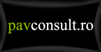 PavConsult